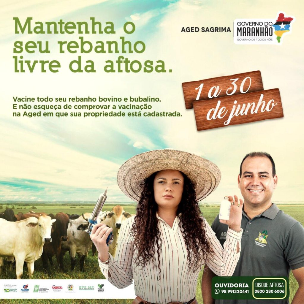 Vacinação contra febre aftosa começa no dia 1º de junho no Maranhão